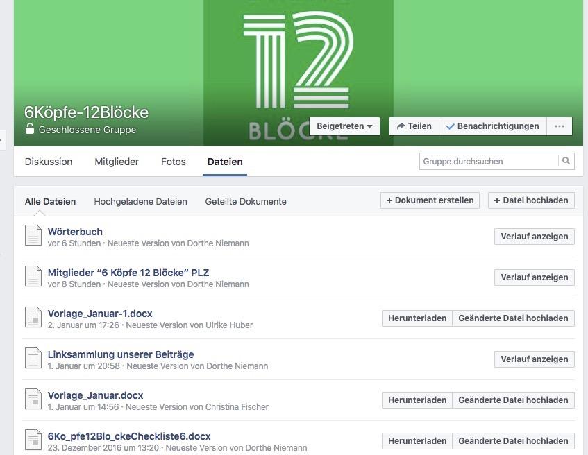 Grafik Facebookgruppe 6Koepfe 12 Bloecke
